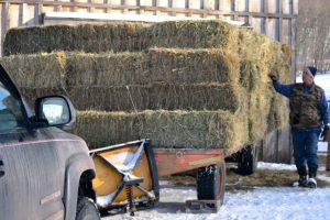 Byron counts the delivery; 132 square bales